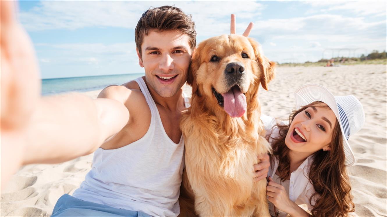 Kako na dopust s psom