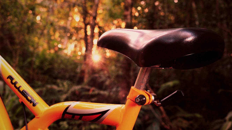 Na kolo za zdravo koleno