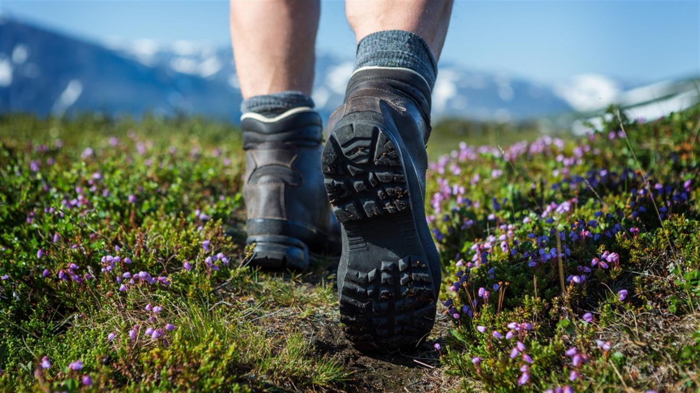Pohodništvo: Kako izbrati prave čevlje?