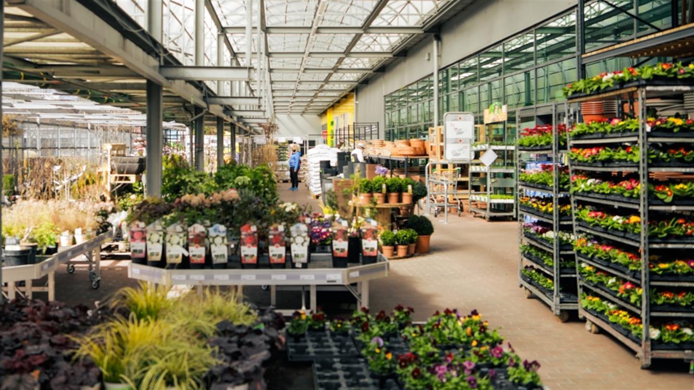 Pomlad je tu: Pripravite svoj vrt na novo sezono