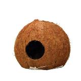 JBL Cocos Cava, akvarijski dekor, L 4,99 €; Mr. Pet, Dvorana 3