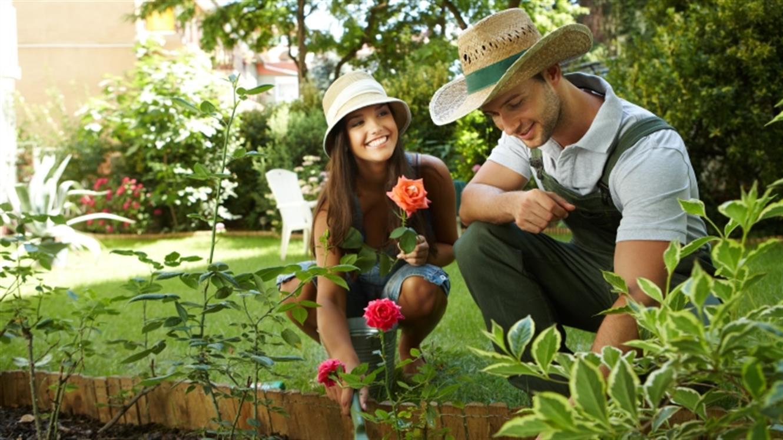 Čas je, da se lotimo vrtnarjenja!