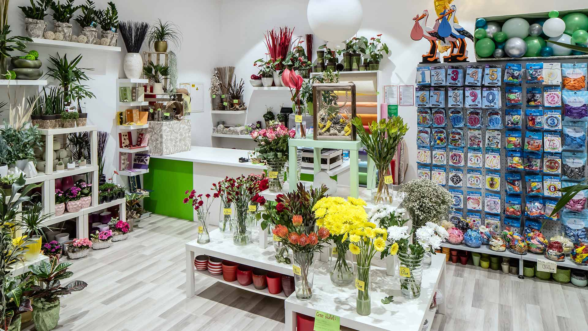 Cvetličarna Tajda